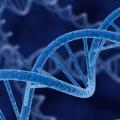 TwistedGenetics